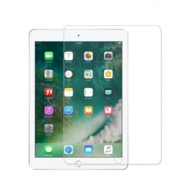 Tempered Glass iPad Mini 5 / Mini 4